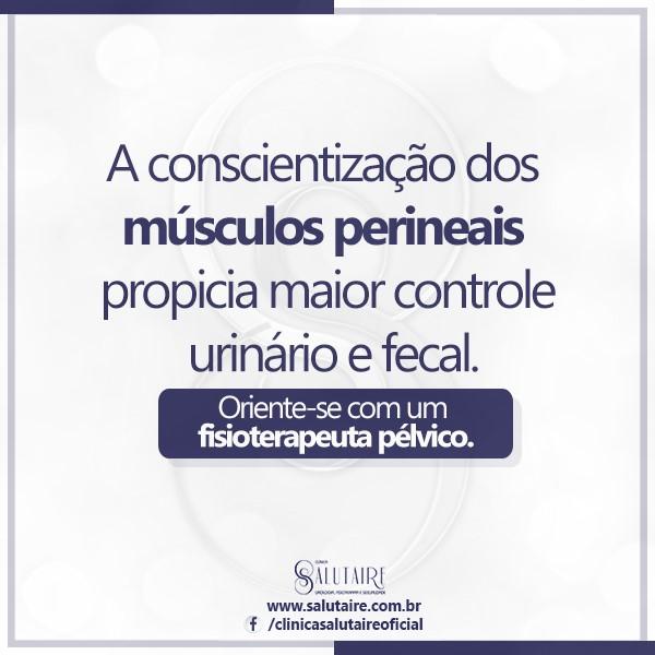 musculos-perineais-salutaire-novembro